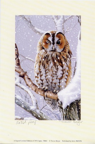 Boyer, Trevor  - Winter Owl - Artist Proof